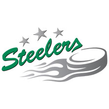Bietigheim Steelers: Saison 2017/2018 - Tickets